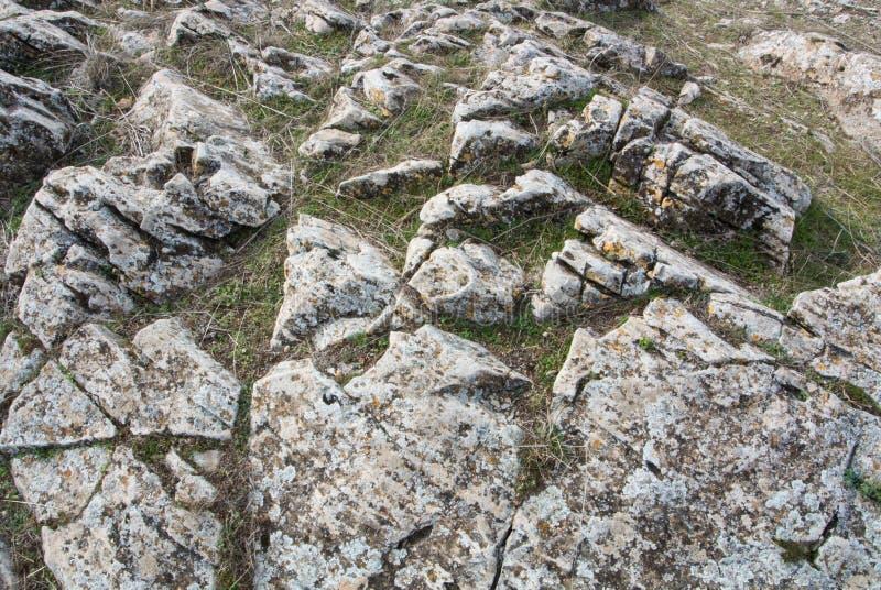 En närbildsikt av stora stenar på fältet royaltyfri foto