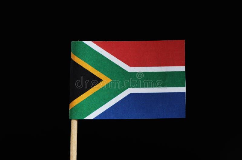En nationsflagga av Sydafrika på tandpetare på svart bakgrund Flaggan har sex gula färger, vitt, rött, blått, svart, grönt royaltyfri bild