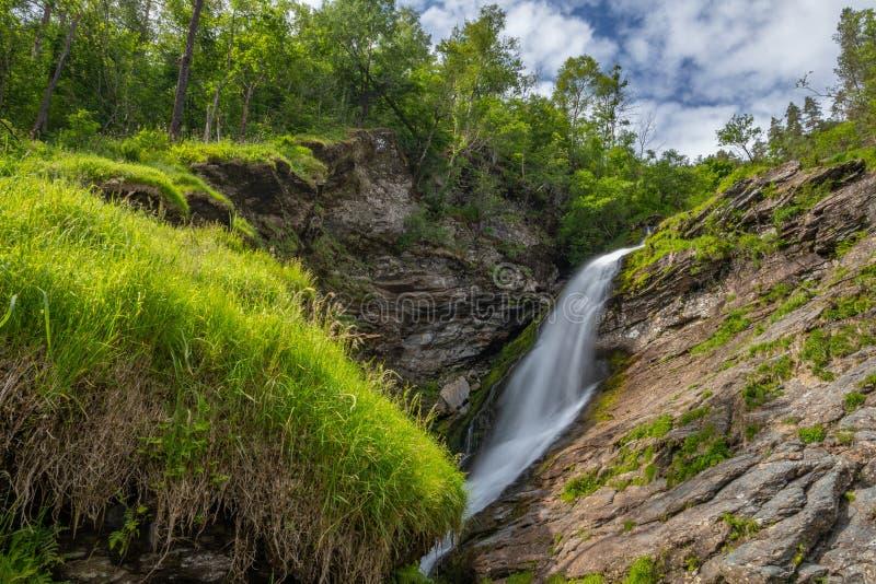 En naturplats med en vattenfall och ett gräs och en skog under blå molnig himmel arkivfoto