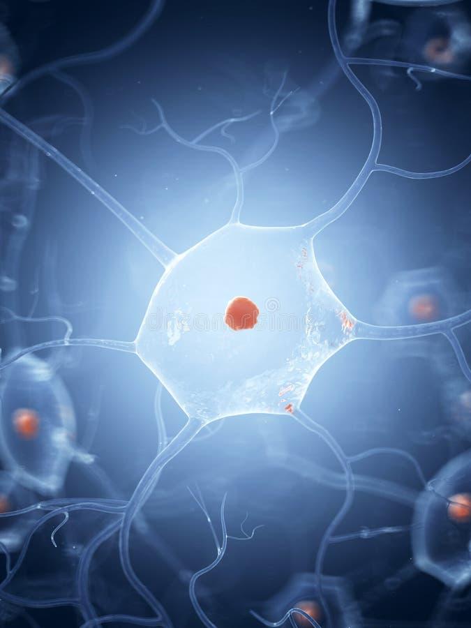 En nervcell royaltyfri illustrationer