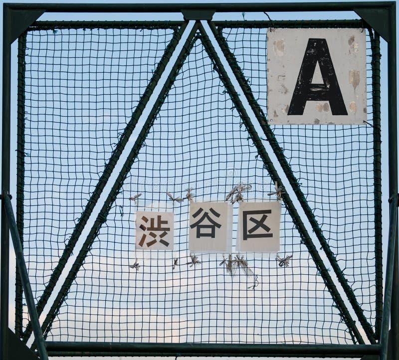 En netto ram på ett offentligt baseballfält nära den tamagawa floden, tokyo, Japan fotografering för bildbyråer