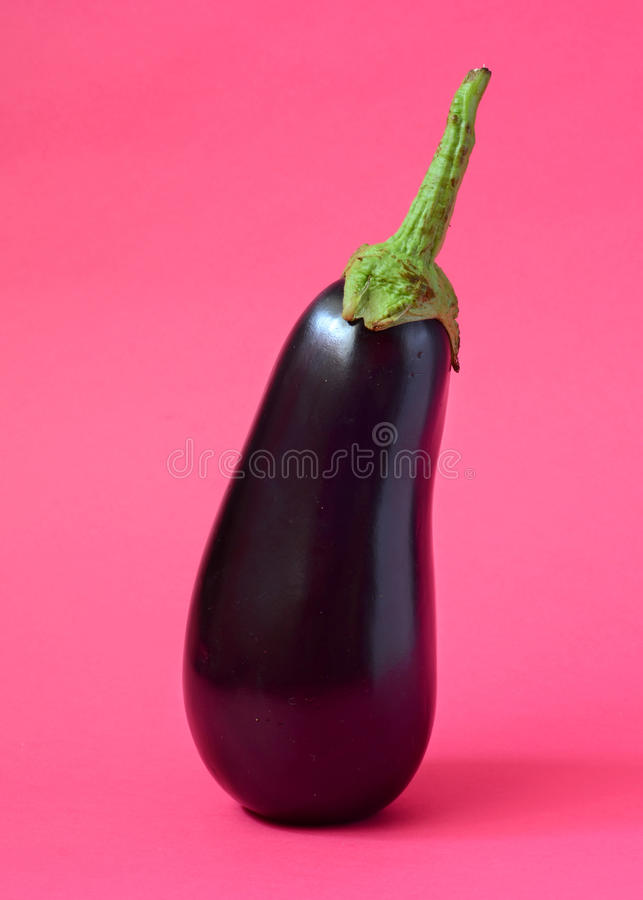 En ny aubergine royaltyfri fotografi