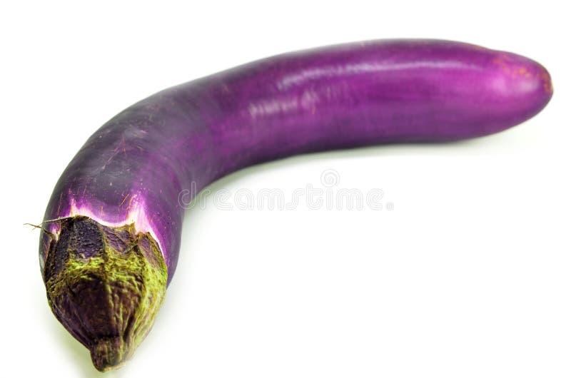 En ny aubergine med den isolerade stammen royaltyfri foto