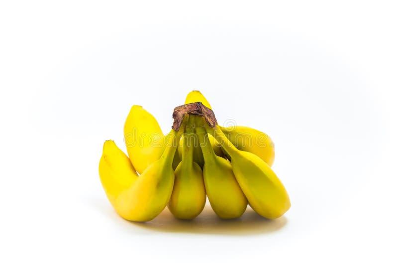 En ny grupp av bananer som isoleras på vit bakgrund royaltyfri bild