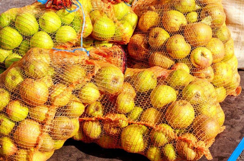 """En ny leverans netto påsar till för en tysk äppeljuicevinodling†""""mycket av härliga nya äpplen royaltyfria bilder"""