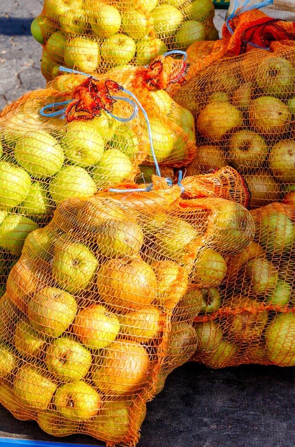 """En ny leverans netto påsar till för en tysk äppeljuicevinodling†""""mycket av härliga nya äpplen fotografering för bildbyråer"""
