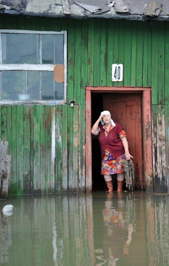 En okänd äldre kvinna i henne hem under en flod Obet River, som kom ut ur bankerna, översvämmade utkanten av staden royaltyfria foton