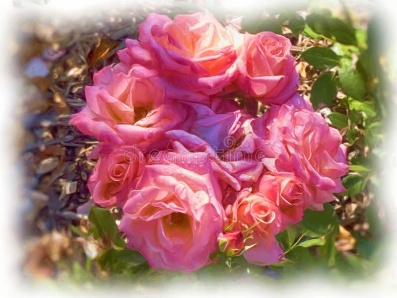 En olja målade buketten av rosa rosor royaltyfri foto