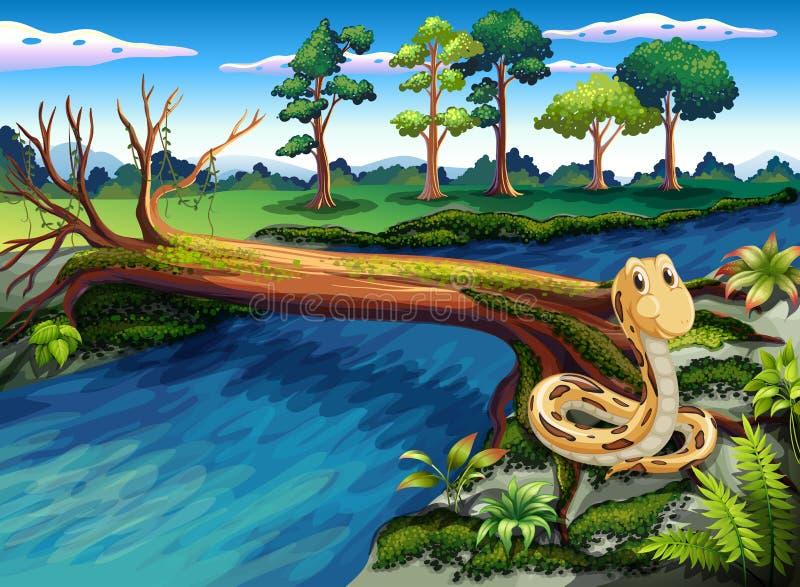 En orm på flodstranden stock illustrationer
