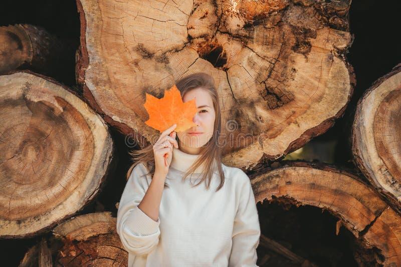 En otoño, mujer escondida detrás de la colorida y hermosa hoja de arce sobre el fondo de leña y troncos foto de archivo