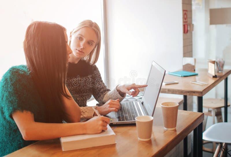 En-på-en möte Två unga affärskvinnor som sitter på tabellen i kafé Flickan visar information om kollega på bärbar datorskärmen royaltyfri bild