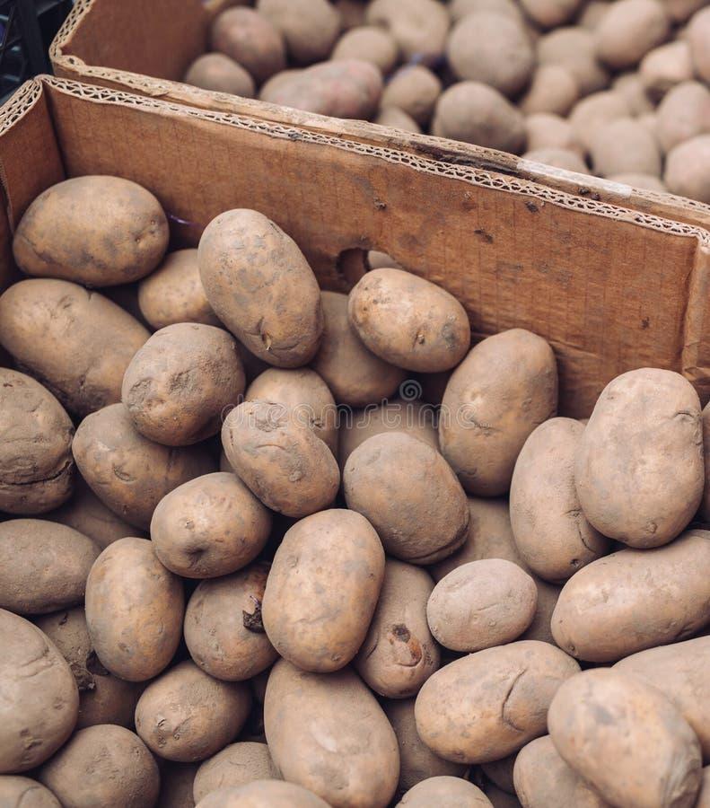 En p?se av r? och smutsiga potatisar Ny potatisn?rbild i ett raster fotografering för bildbyråer