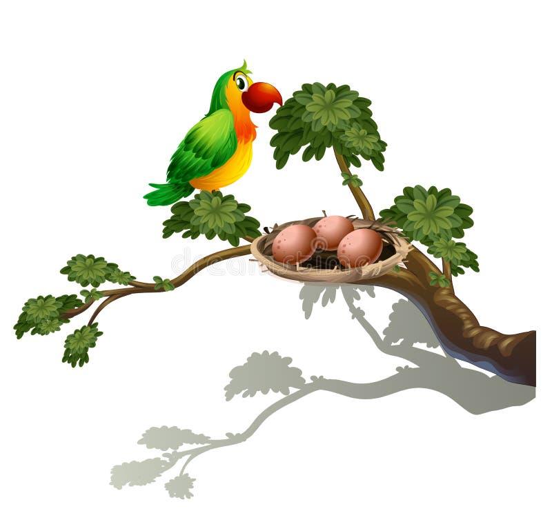 En papegoja och ett rede royaltyfri illustrationer