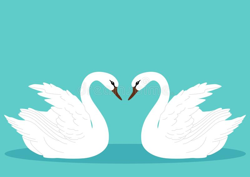 En para av swans Swan royaltyfri illustrationer