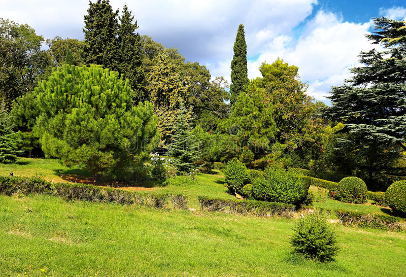 En parc subtropical photographie stock libre de droits