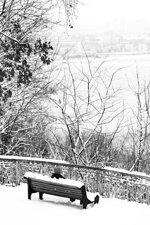 En parque de la ciudad del invierno con los árboles fotografía de archivo libre de regalías