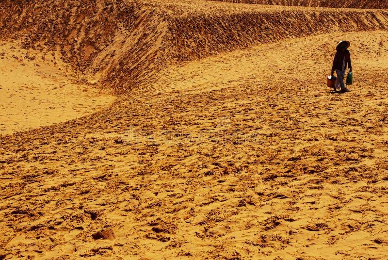 En peddler på öknen arkivfoton