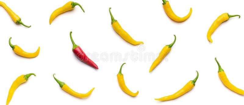 En peppar för röd chili bland guling på vit bakgrund royaltyfri bild