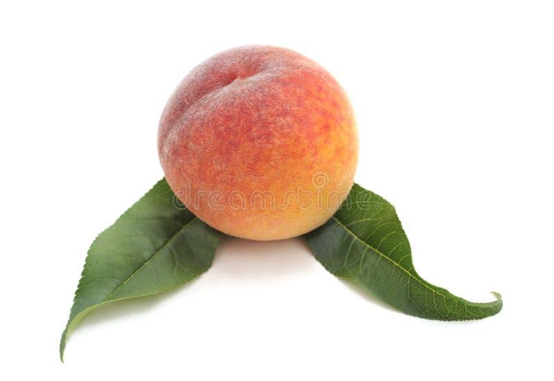 En persika med sidor arkivfoton