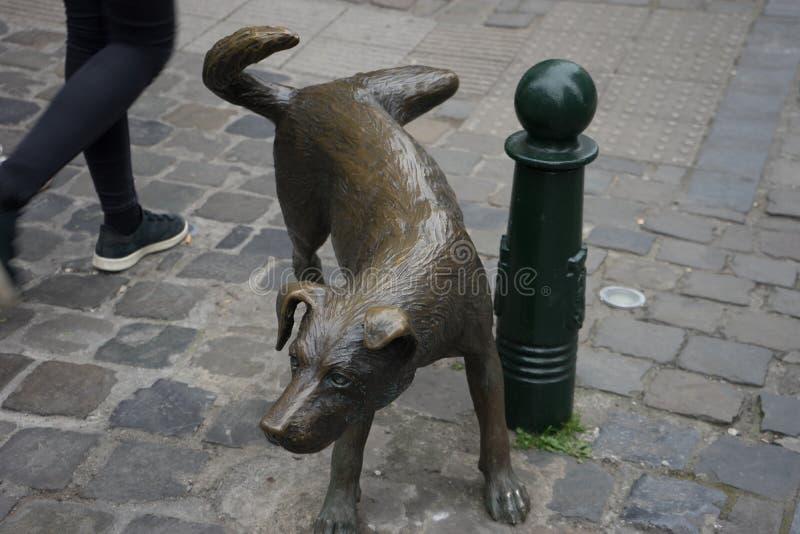 En person går förbi en skulptur av en hund omkring för att kissa på en pol arkivbilder