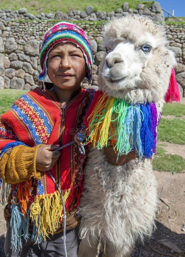 En peruansk pojke med en lama nära Cusco i Peru arkivfoton