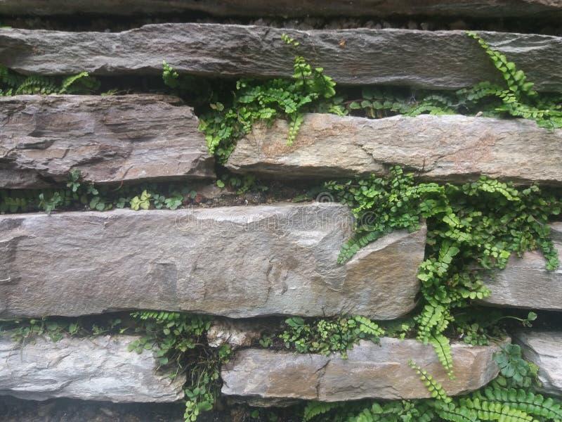En pierre mur empilé vieilles par ruines image libre de droits