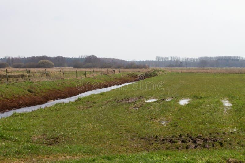 En pik som fylls med vatten, kör längs grässlätten royaltyfri bild