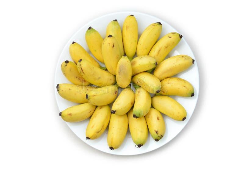 En plátanos deliciosos de la placa los pequeños aislados en blanco imagen de archivo libre de regalías