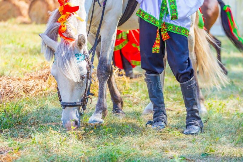 En pojke i rysk nationell kläder och en ponny arkivfoto