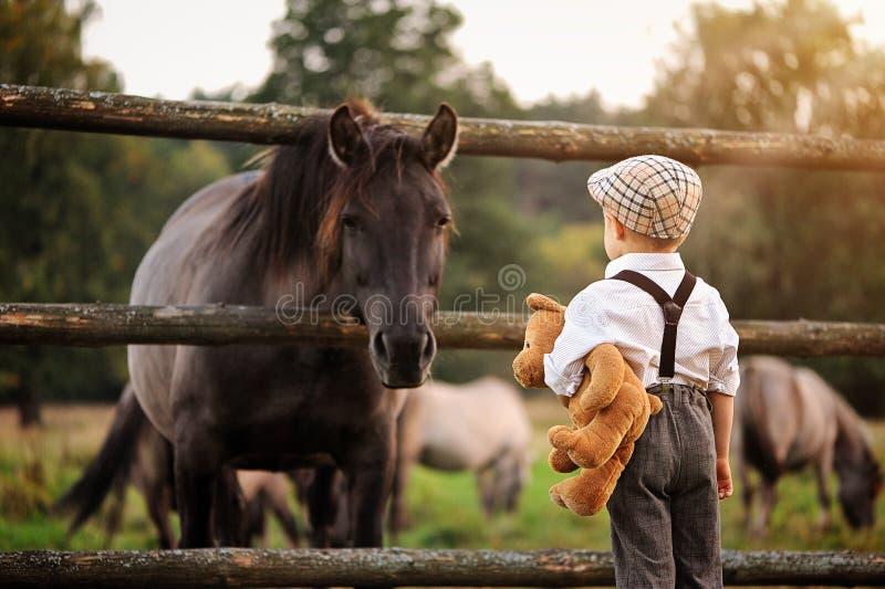 En pojke och en häst royaltyfria foton