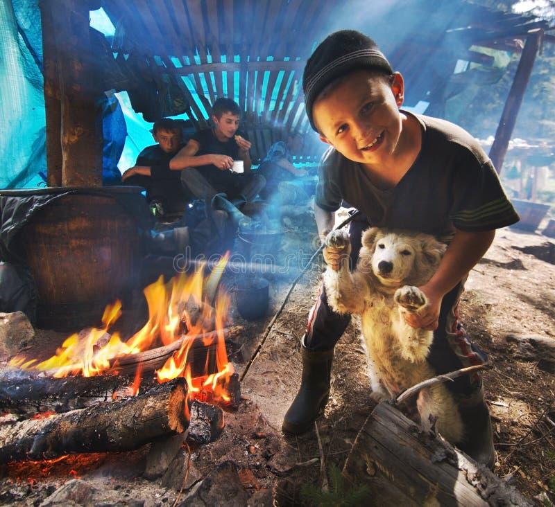 En pojke spelar med en hund royaltyfri fotografi