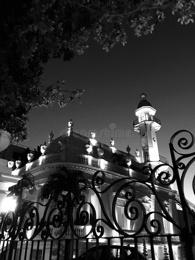 En port och ett träd framme av en minaret i Merida, Mexico - MEXICO fotografering för bildbyråer