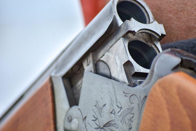 En process av jakt under jaktsäsong, process av partidgejakt, jägare i siganltorkduk i fält Vapnet ligger på hans skuldra arkivbild
