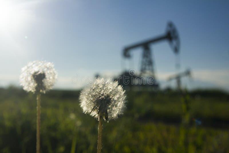 En pumpjack vid ett gräs- fält arkivfoto