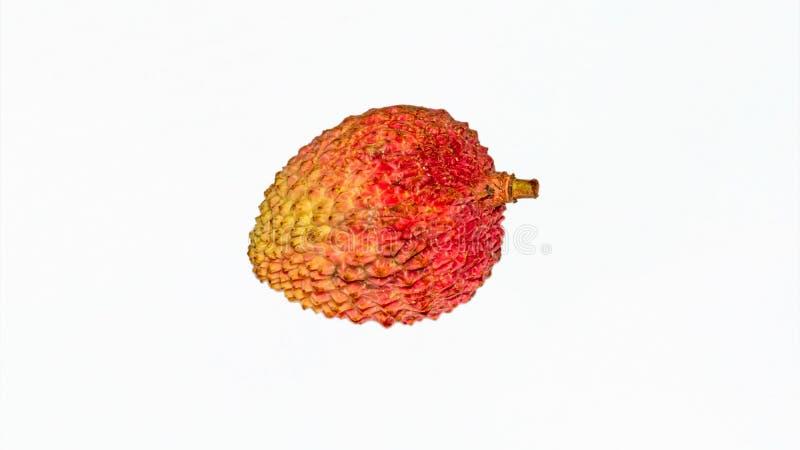 En röd och gul färglitchiplommon på isolerad vit bakgrund arkivbild