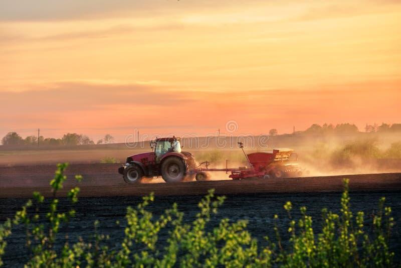 En röd traktor med en seeder på ett fält på solnedgången arkivfoto