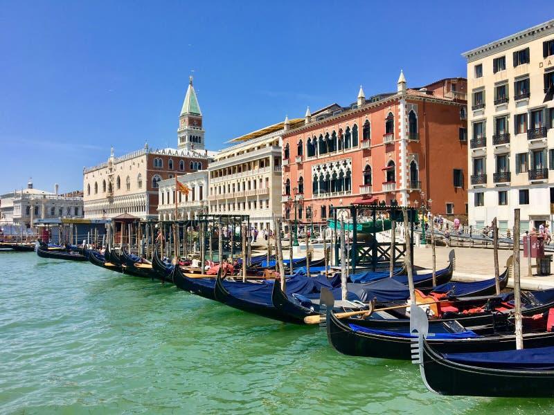 En rad av gondoler som anslutas längs stranden av Venedig med dogeslotten och den Sanka fläckcampanilen i bakgrunden arkivfoton