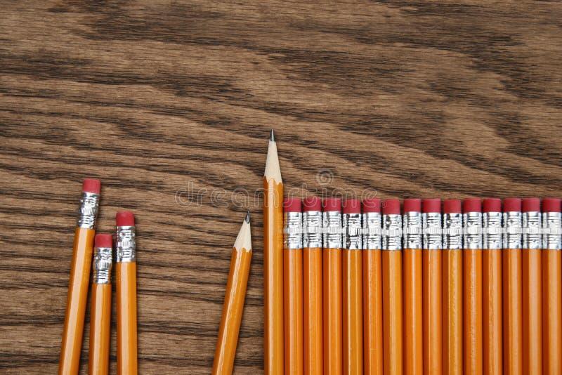 En rad av röda blyertspennor på wood yttersida royaltyfri fotografi