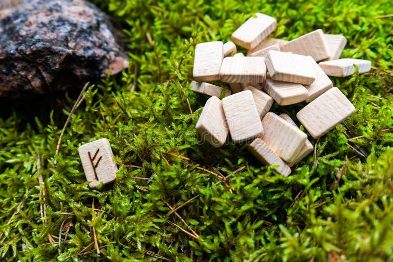 En rad skandinaviska runor på träplankar ligger på en naturlig moss bredvid Fehu-rune som drar till sig rikedomar royaltyfri fotografi