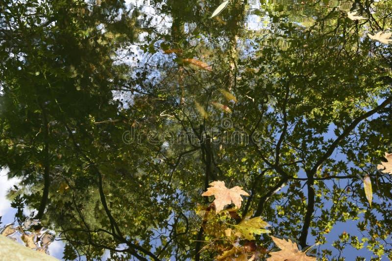 En reflexion av himlen och försöken fotografering för bildbyråer