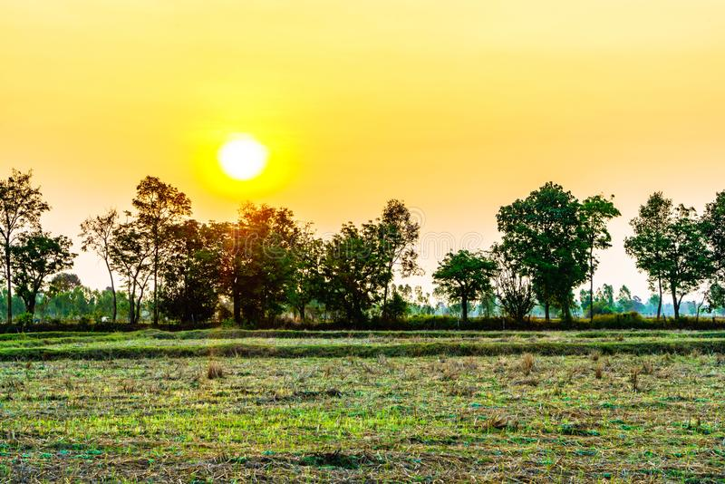 En regardant la vue de lever de soleil formez le champ photo libre de droits