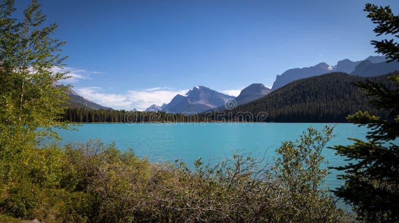 En regardant vers le sud le lac Waterfowl, lac alimenté par les glaciers dans les Rocheuses canadiennes - au large de la promenad photos libres de droits