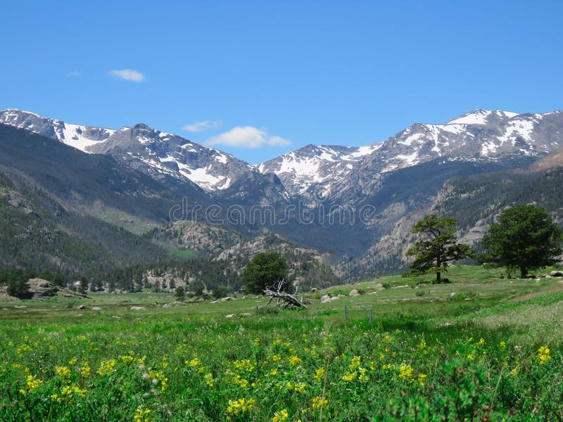 En Rocky Mountain Summer Day royaltyfri fotografi