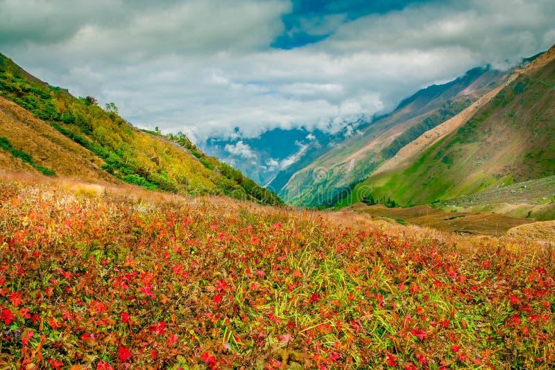 En-route Bali Pass, Upper Garhwal Himalaya stock image