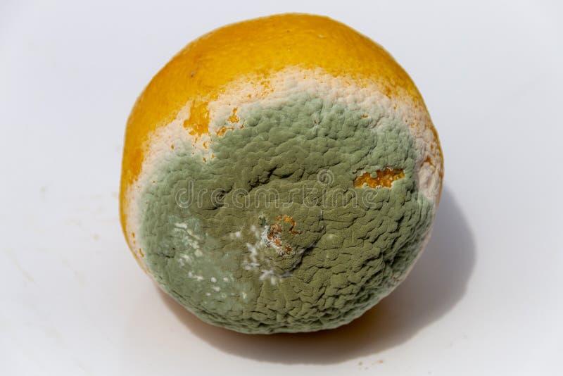 En ruttna citron arkivfoton