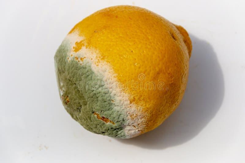 En ruttna citron arkivbild