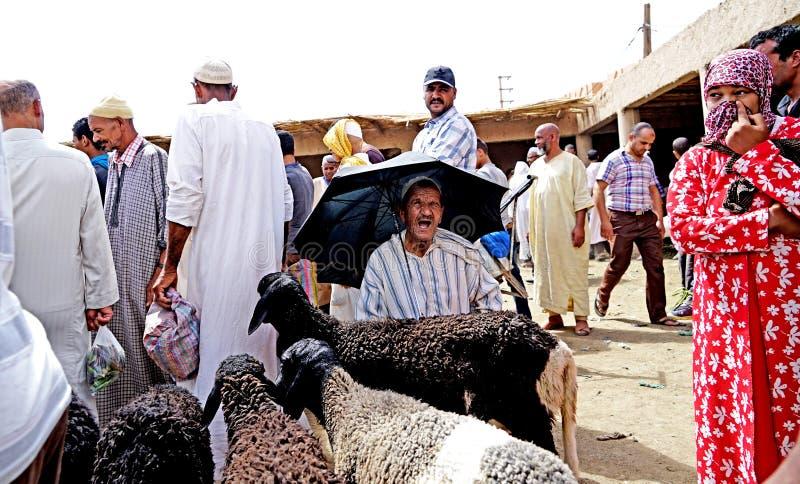 En säljare av får skyddar från solen med ett paraply i souken av staden av Rissani i Marocko royaltyfria foton