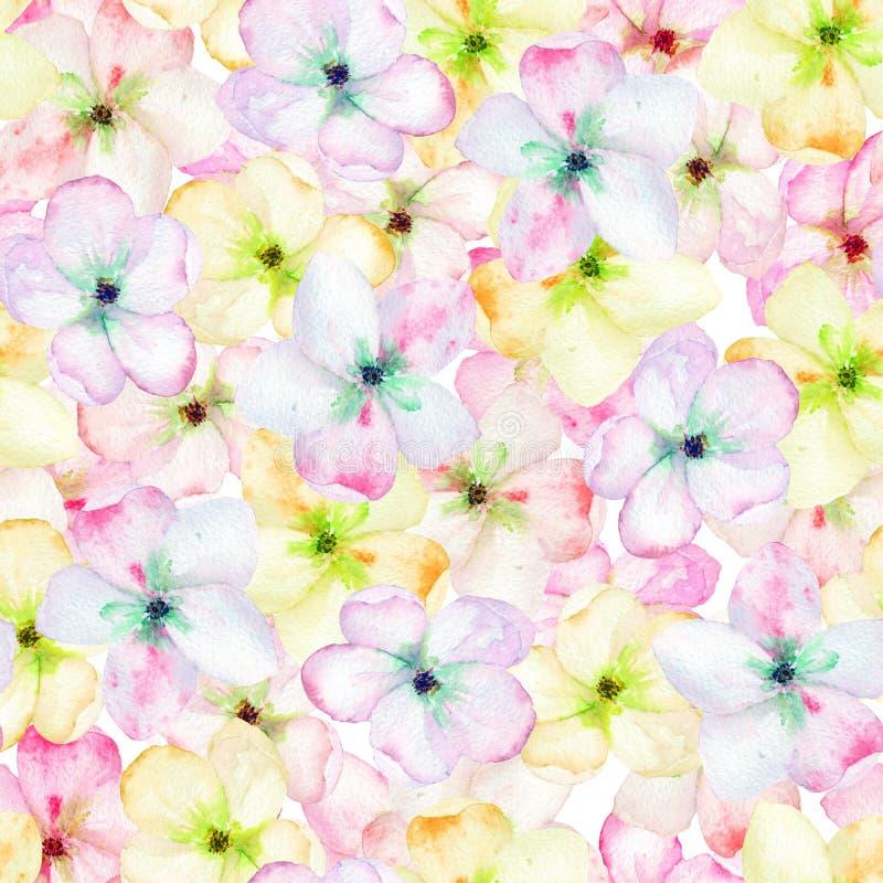 En sömlös blom- modell med det mjuka rosa äppleträdet som blommar blommor som målas i en vattenfärg stock illustrationer