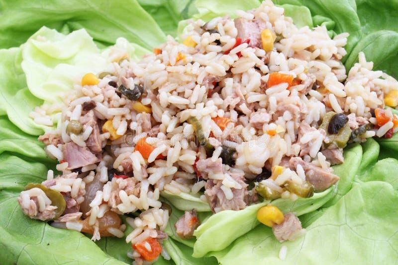En sallad av ris- och tonfiskfisken fotografering för bildbyråer