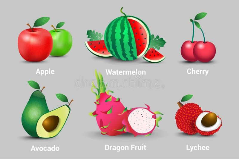 En samling av saftiga nya frukter för realistisk vektor Äpplen, vattenmelon, körsbär, avokadon, frukt, drakar och litchiplommoner stock illustrationer